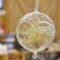 「リビングを彩るテラリウムのDIYワークショップ」開催!応募締切:9/3(日)